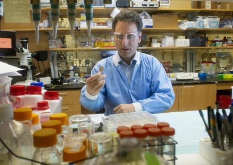 <p>Mark Prausnitz, PhD, Georgia Tech Regents professor in the School of Chemical and Biomolecular Engineering, is shown in the laboratory where the microneedle vaccine patch was developed. (Credit: Christopher Moore, Georgia Tech)</p>