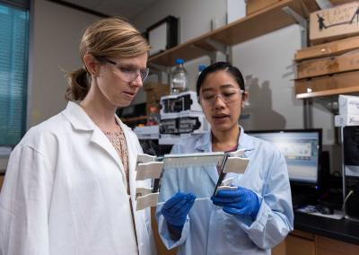 Researchers Christine He and Martha Grover